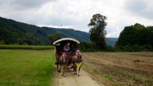 Kirchenchor-Ausflug 2016: Kutschfahrt durchs Altmühltal