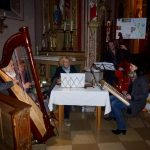 Simsseerosen in St. Peter